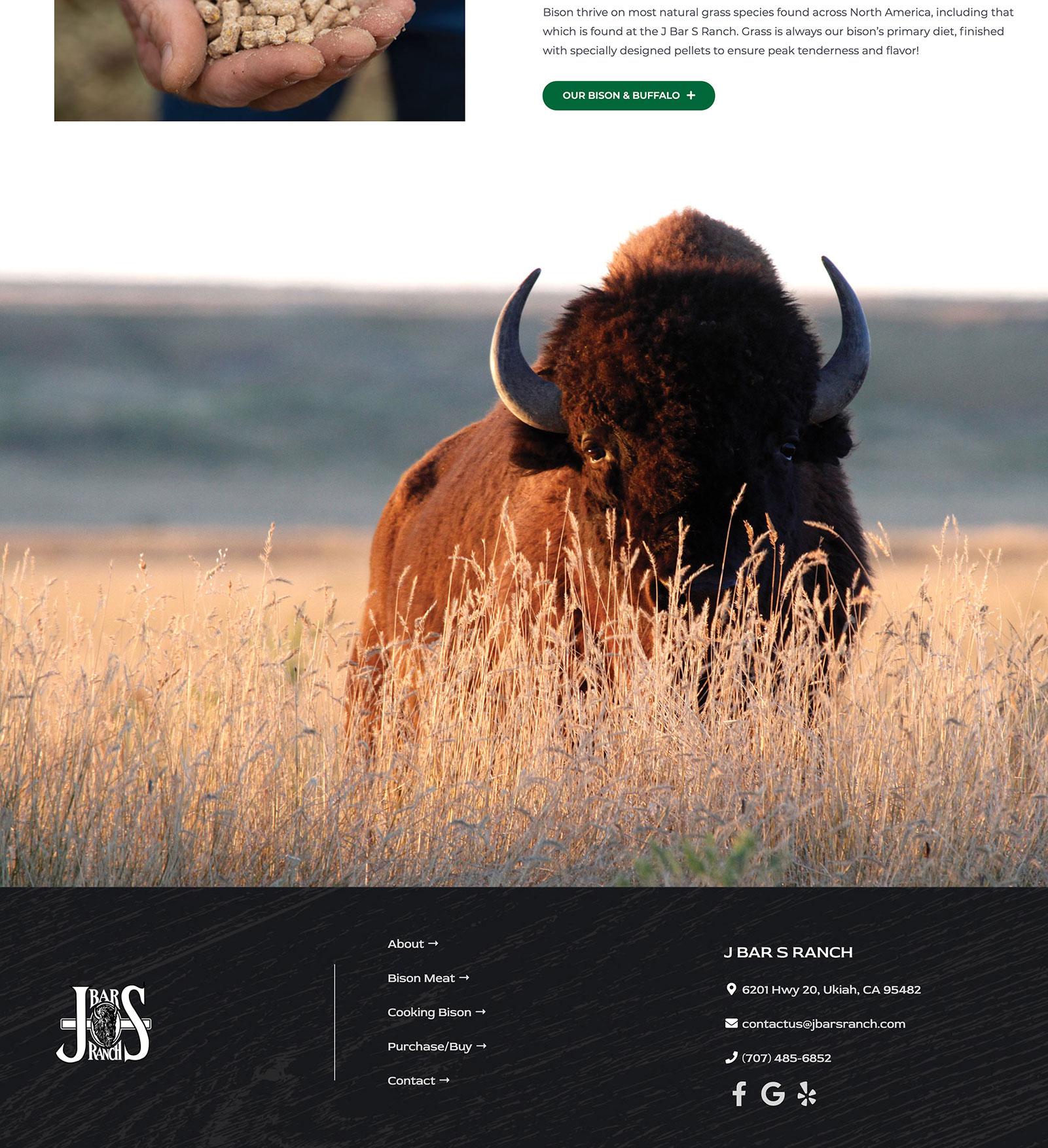 J Bar S Ranch Website
